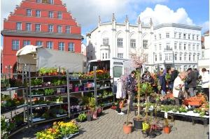 Pressemitteilung Gartenmarkt Am 4 Mai 2019 Auf Dem Historischen
